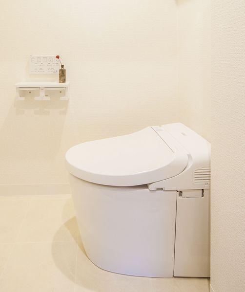 DSC_9737_toilet